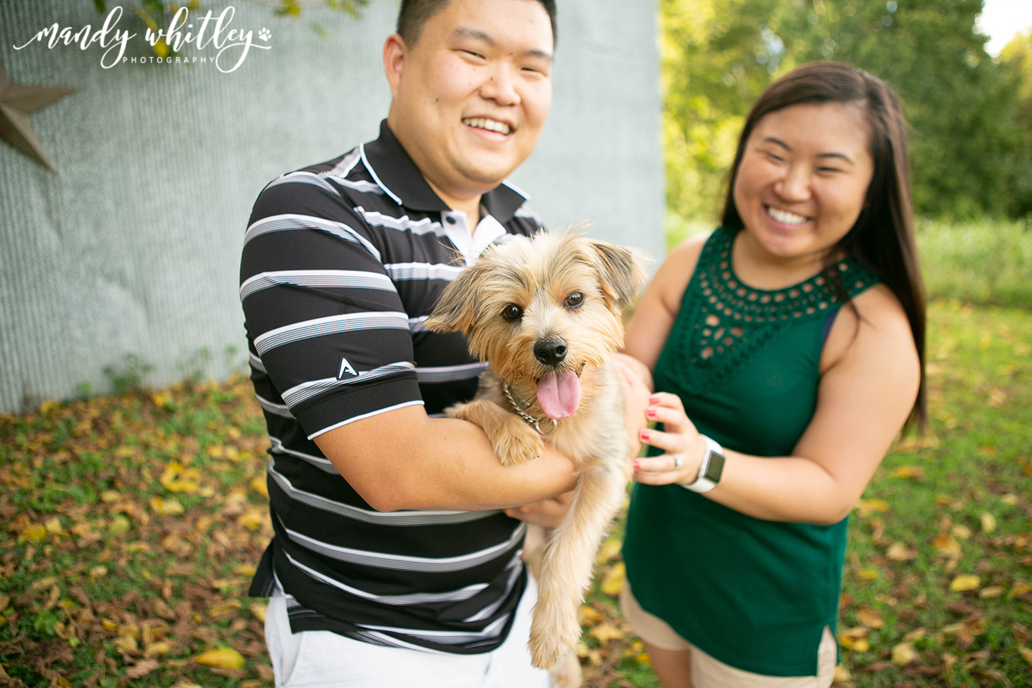 Top pet photographers in nashville