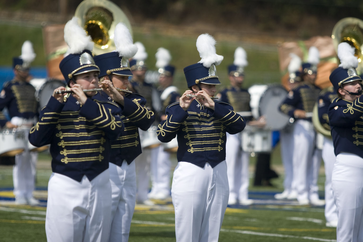 MOUNTAIN LION MARCHING BAND