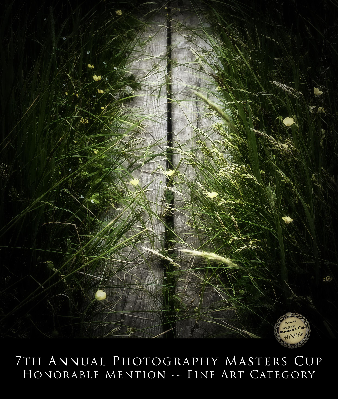 2013-Boardwalk.jpg