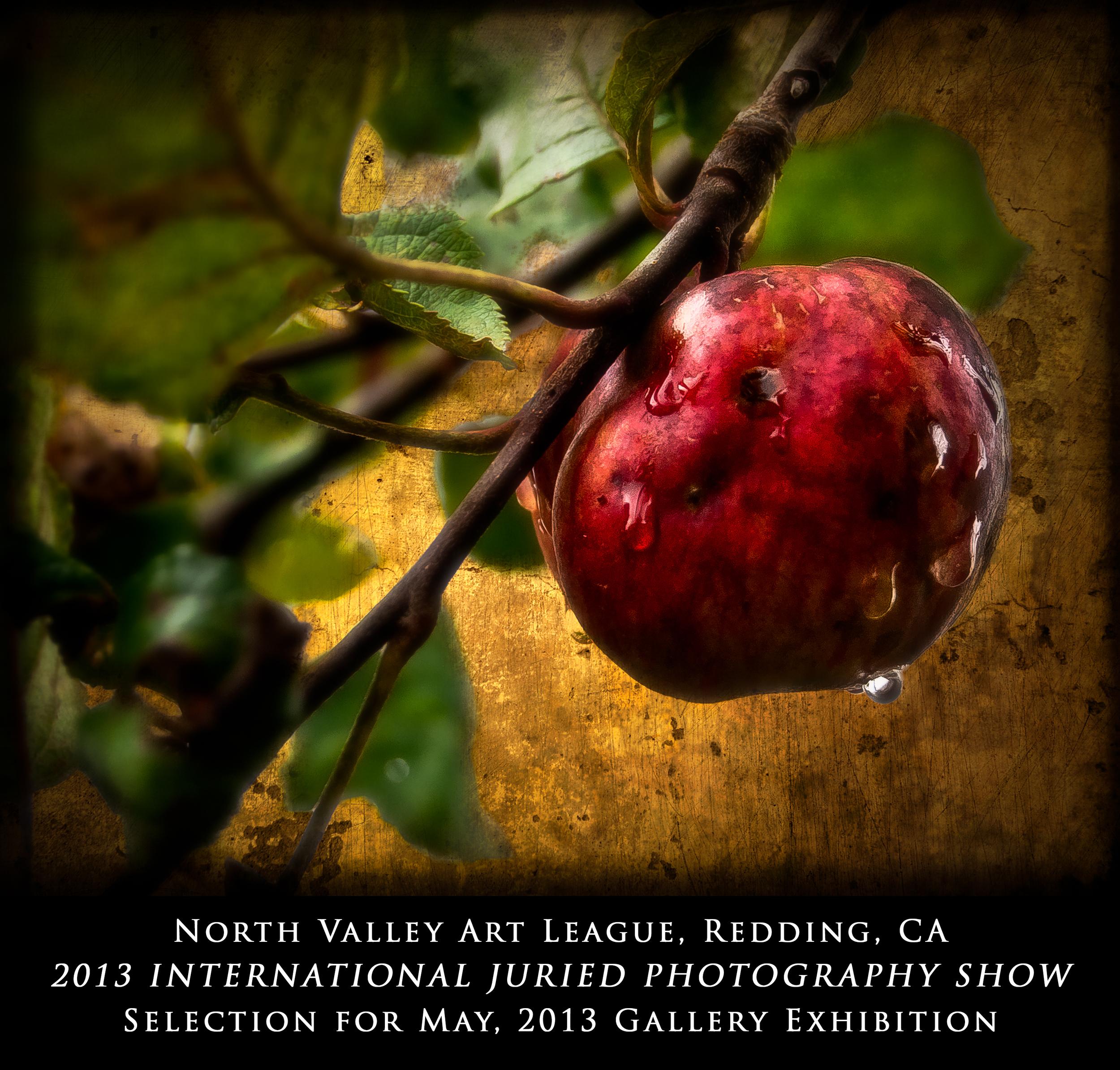 2013-Recognition-9.jpg