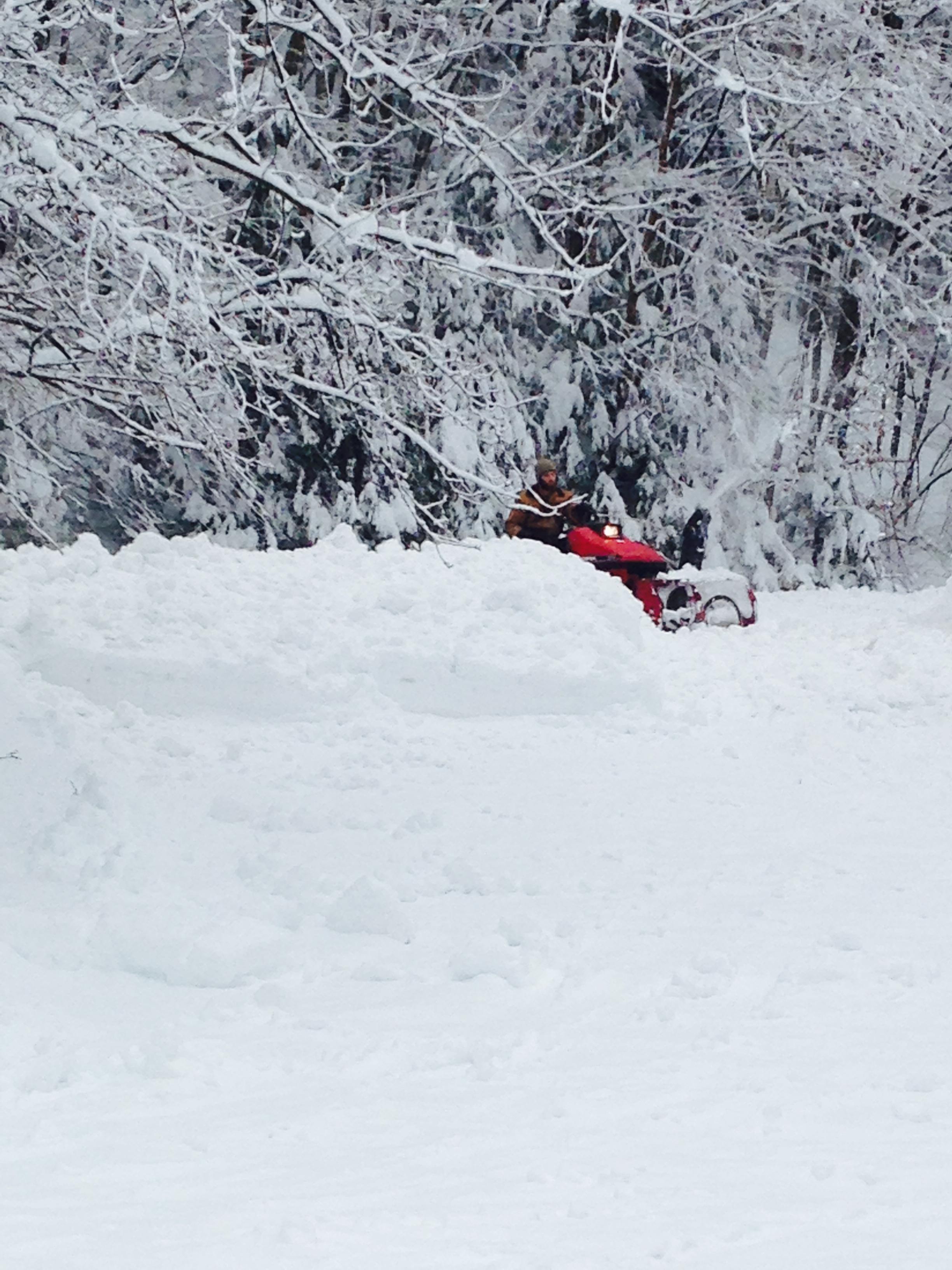 driveway - snowblower.jpg