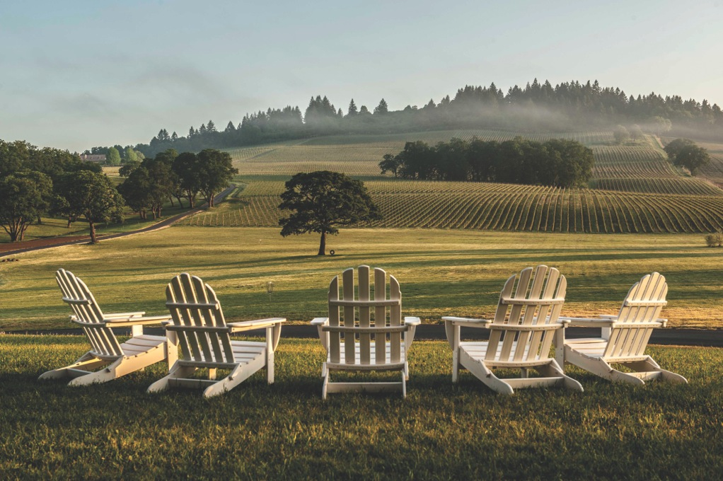 Image Courtesy of Stoller Vineyards. Photo by Mike Haverkate