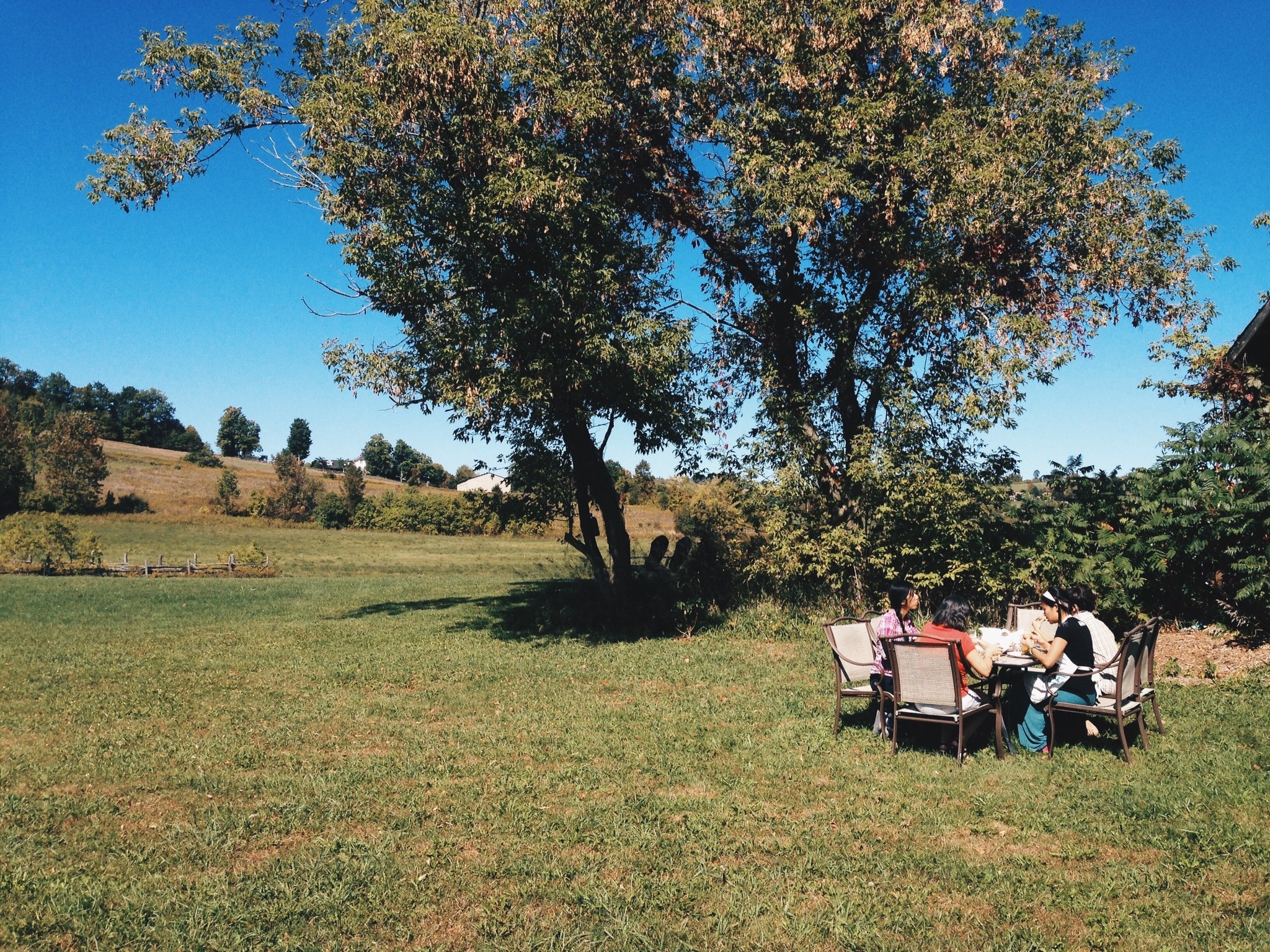 Lunch in an open field