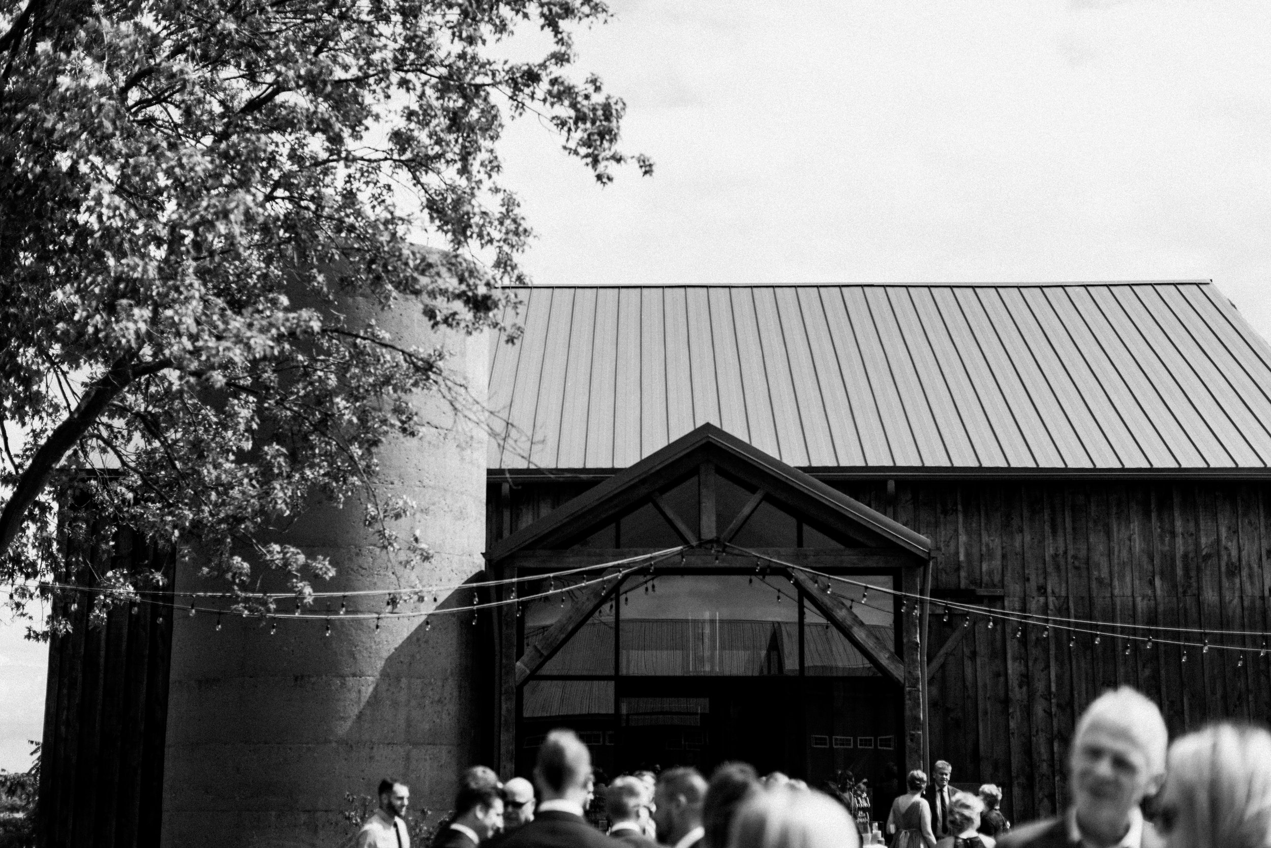 Earth To Table Farm Hamilton Wedding Photographer