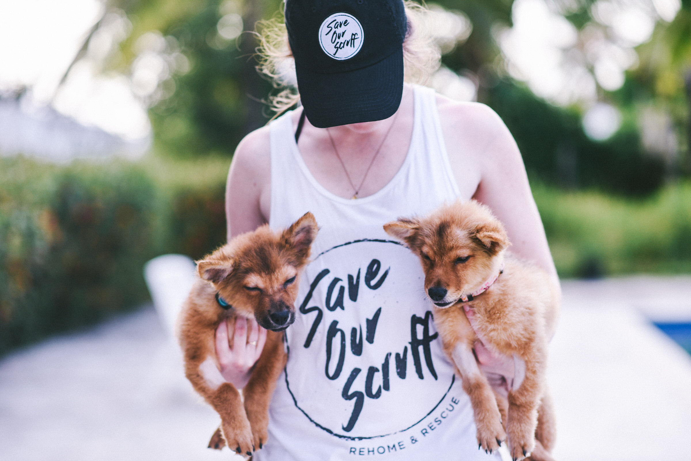 Megan Michelle Photography - Save Our Scruff - 2018 Spay + Neuter Clinic