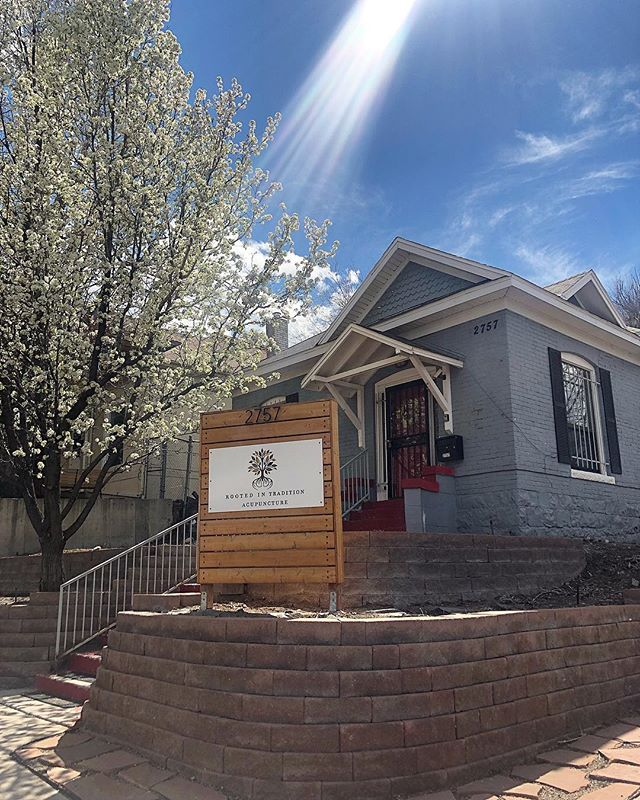 Spring has sprung! Come on by for all your acupuncture, pilates and massage needs!  #denver #acupuncture #massage #pilates #spring #healthyliving #