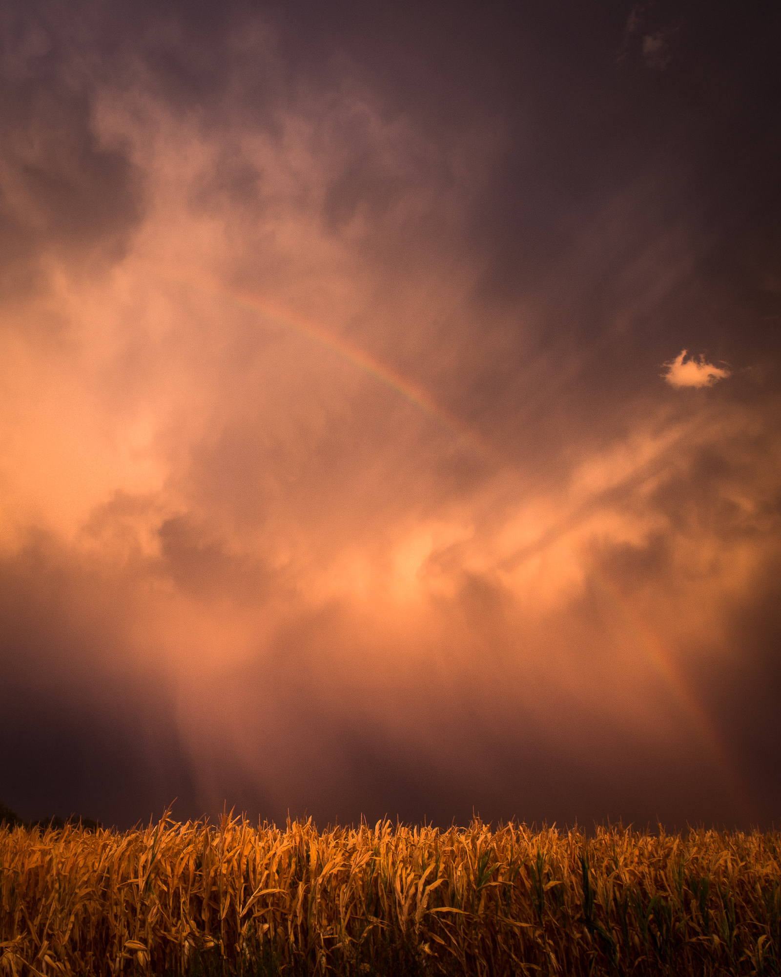 A rainbow appears after a storm passes in eastern Kansas.