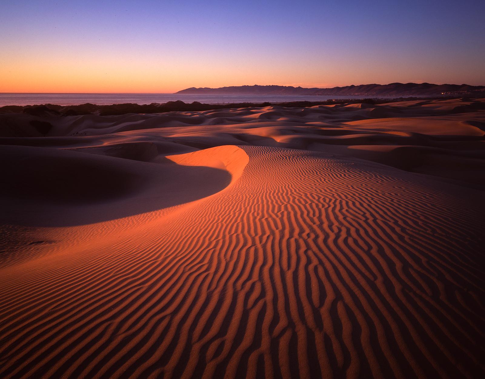 Windswept - Oceano Dunes, CA
