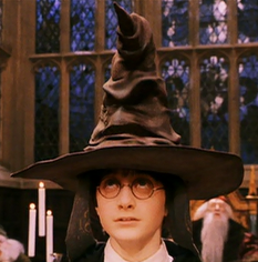 Sorting hat on Harry