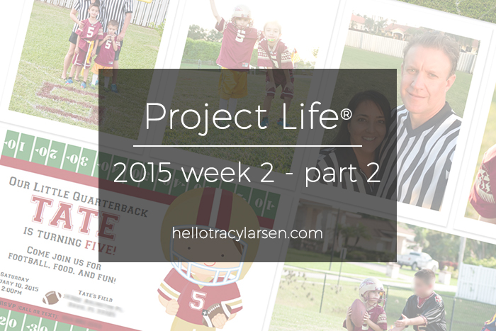 tracy larsen's digital project life pages 2015 ==> hellotracylarsen.com