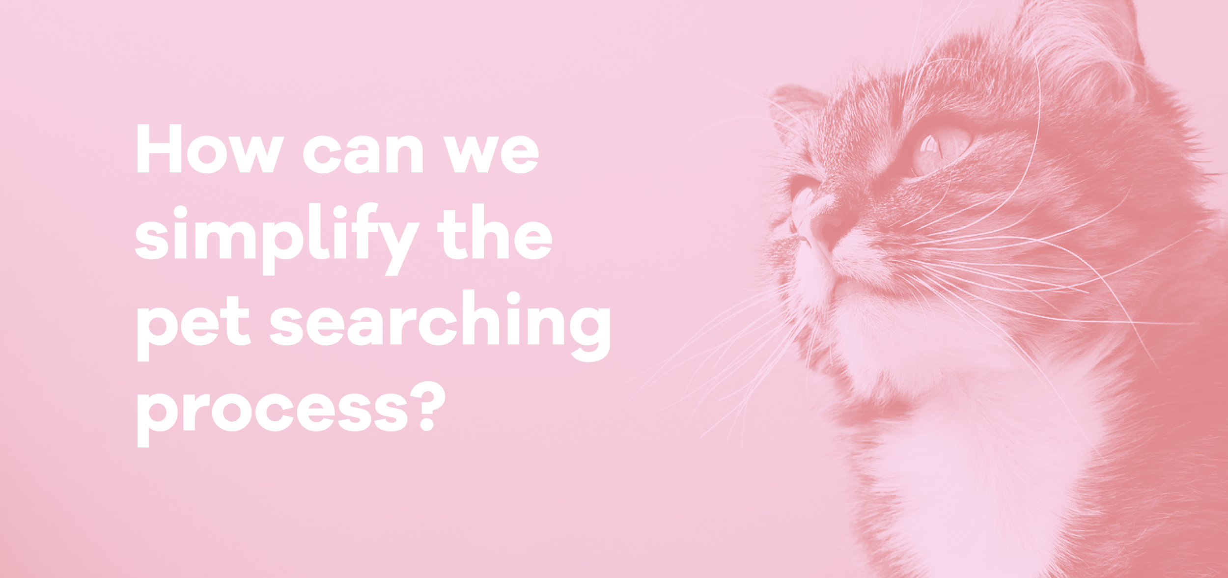 kitty questionpsd.png