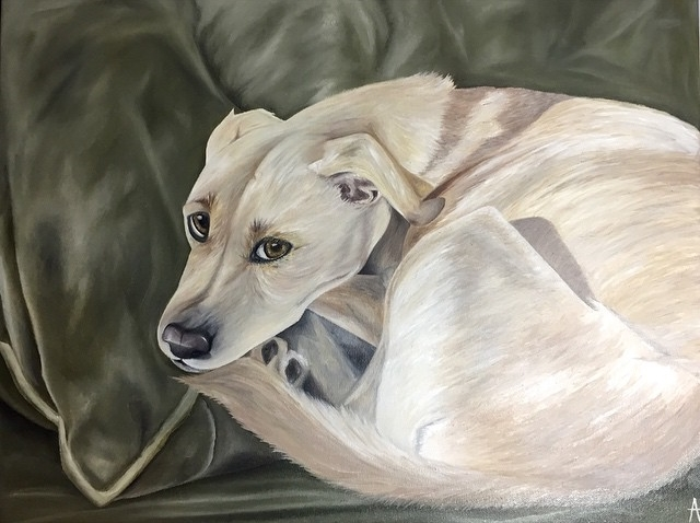 """Bailey"" 18x24 Oil on Canvas."