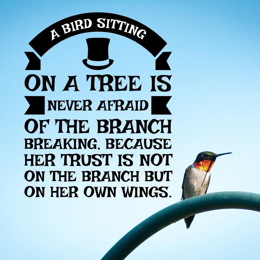 bird Katie the Scrapbook Lady.JPG