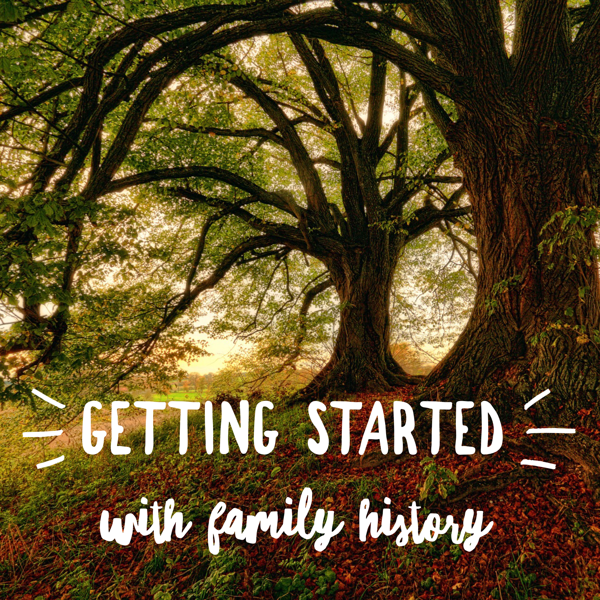 family history.PNG
