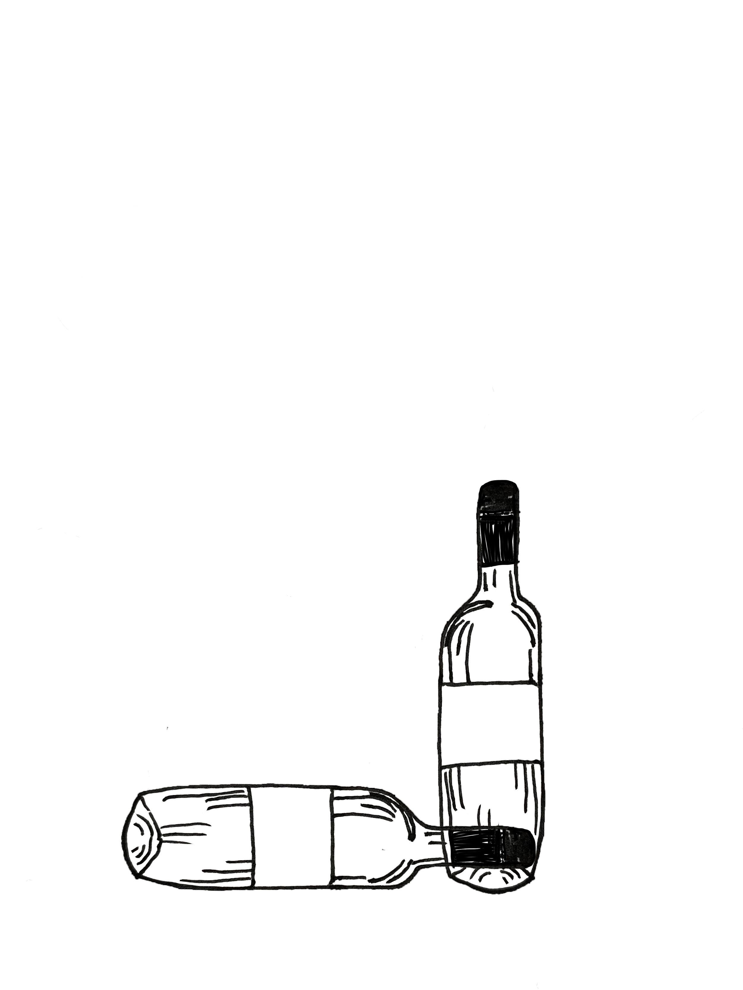 bottle sketch.jpg