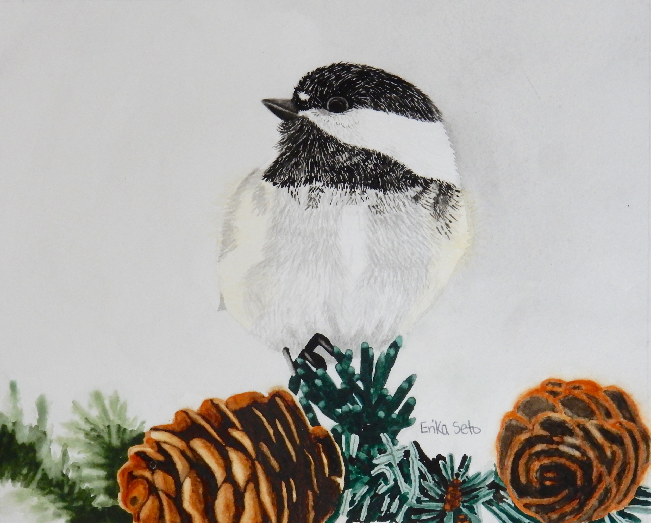 Erika Seto.adult student.watercolor bird