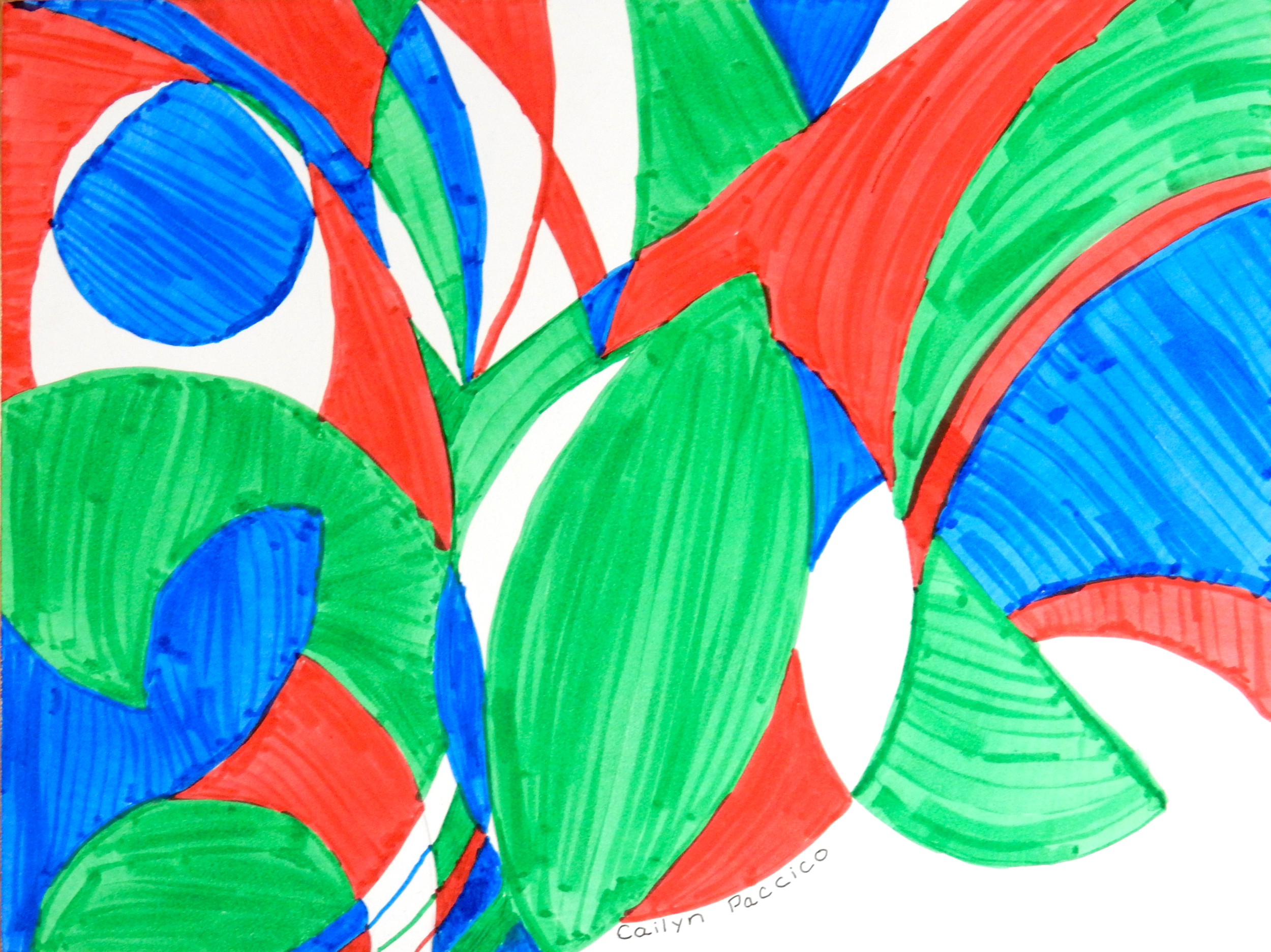Cailyn Paccico.cirlcles.markers.2015