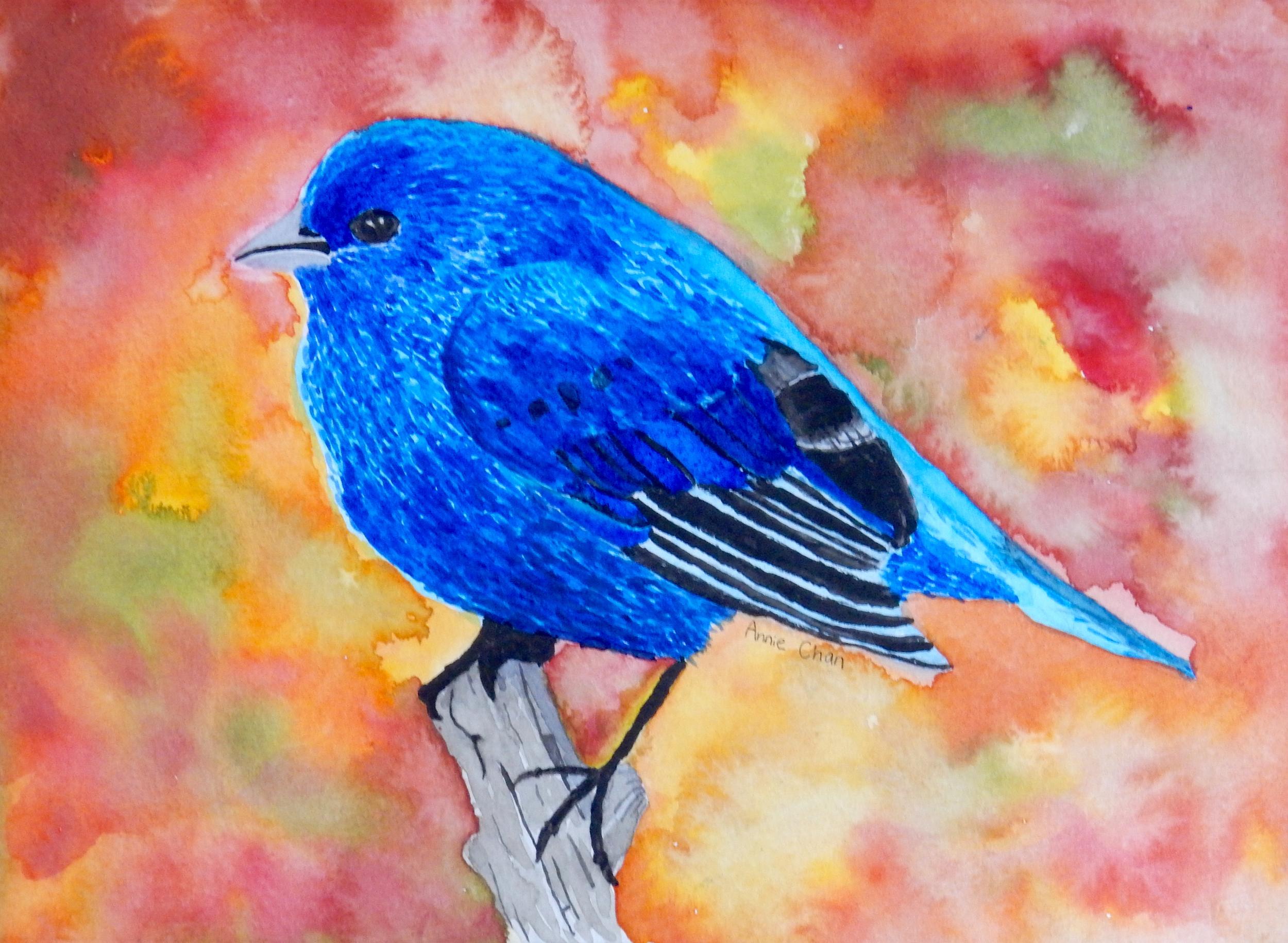 Annie Chan.11 yrs.watercolor.Blue Bird
