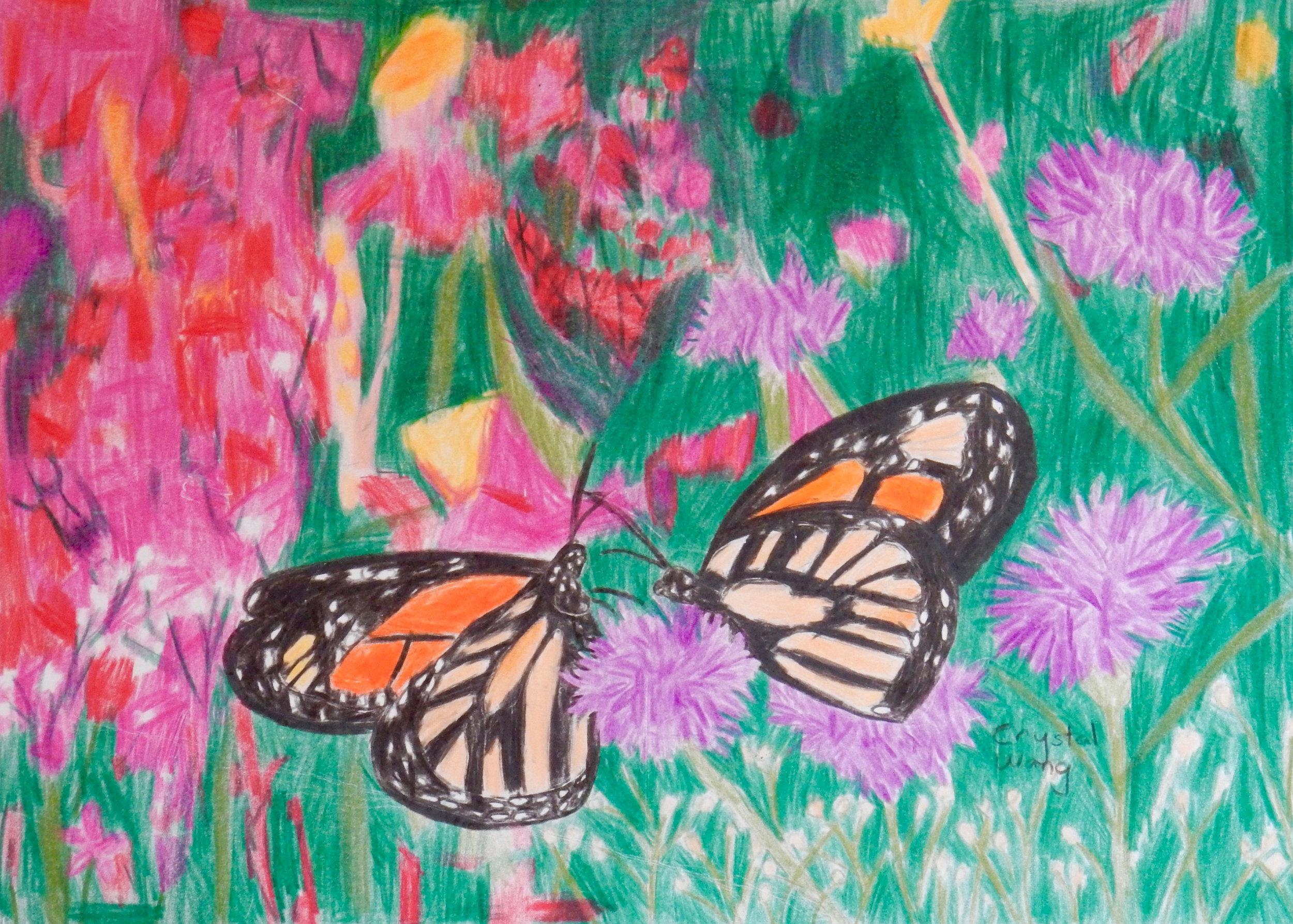 Crystal Wang.3rd grade.colored pencil