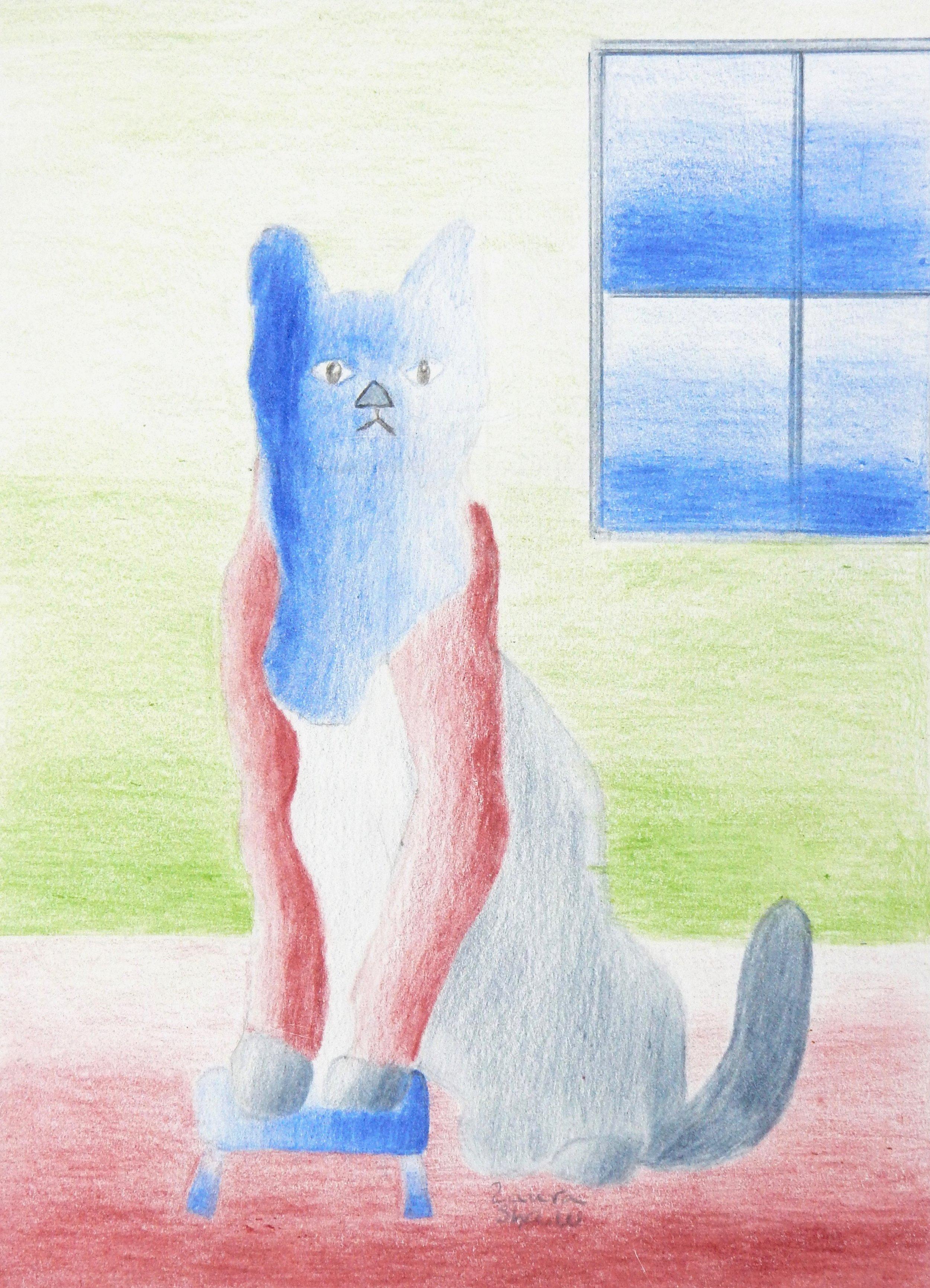Laura Shaw.colored pencil