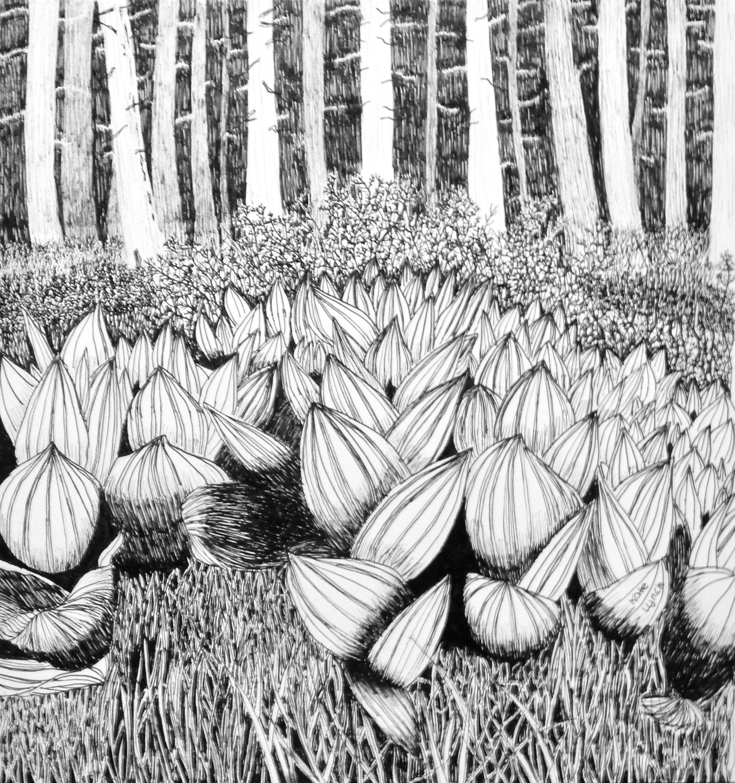 Kate Lynch.14yrs.pen & ink