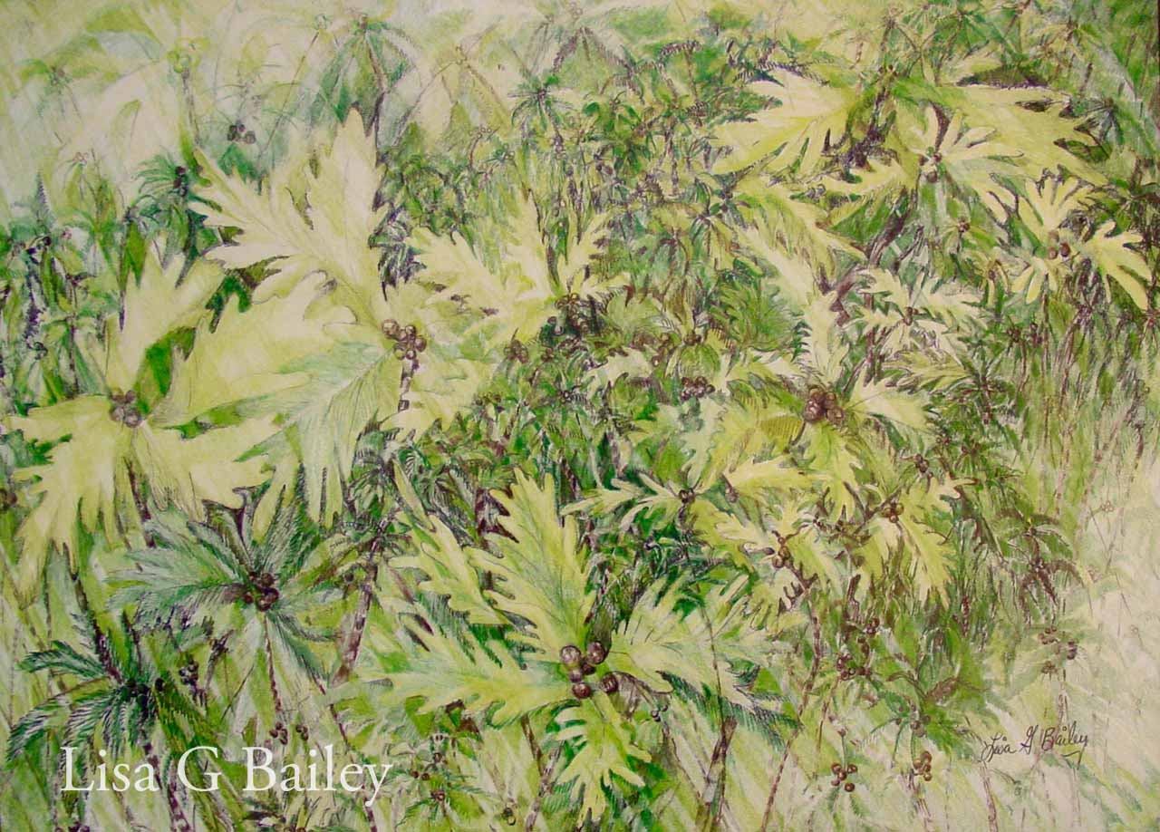 Lisa G Bailey 'Sun-lit Leaves' (colored pencils & ink)