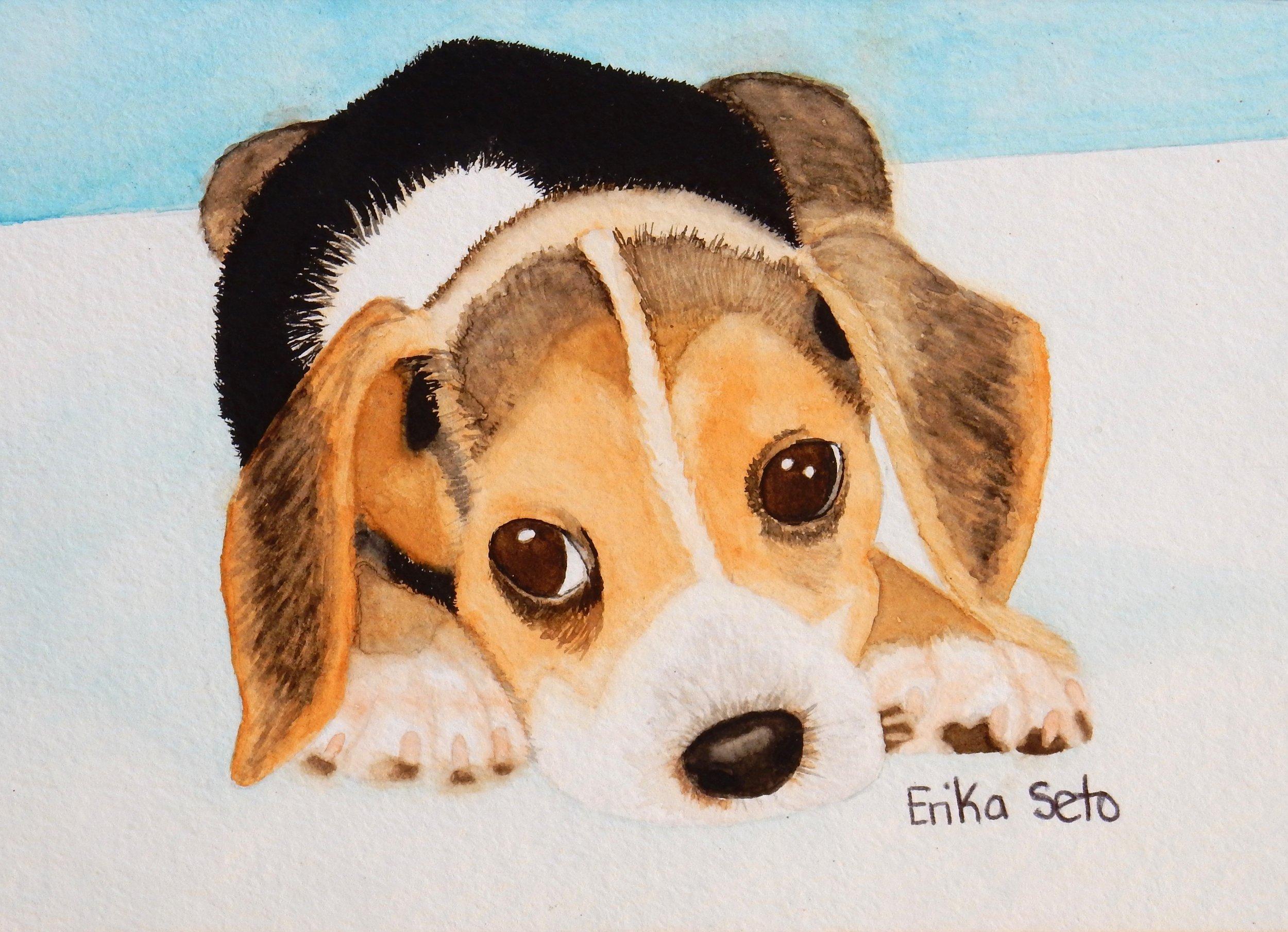 Erika Seto.watercolor