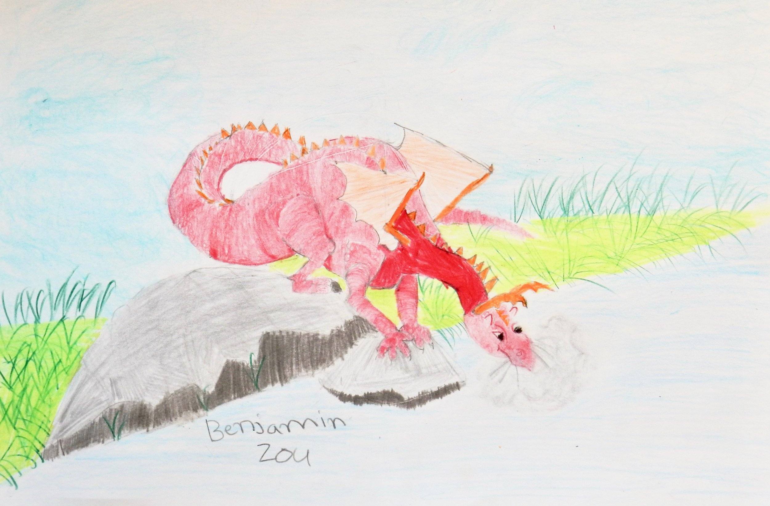 Benjamin Zou.9 yrs.colored pencil