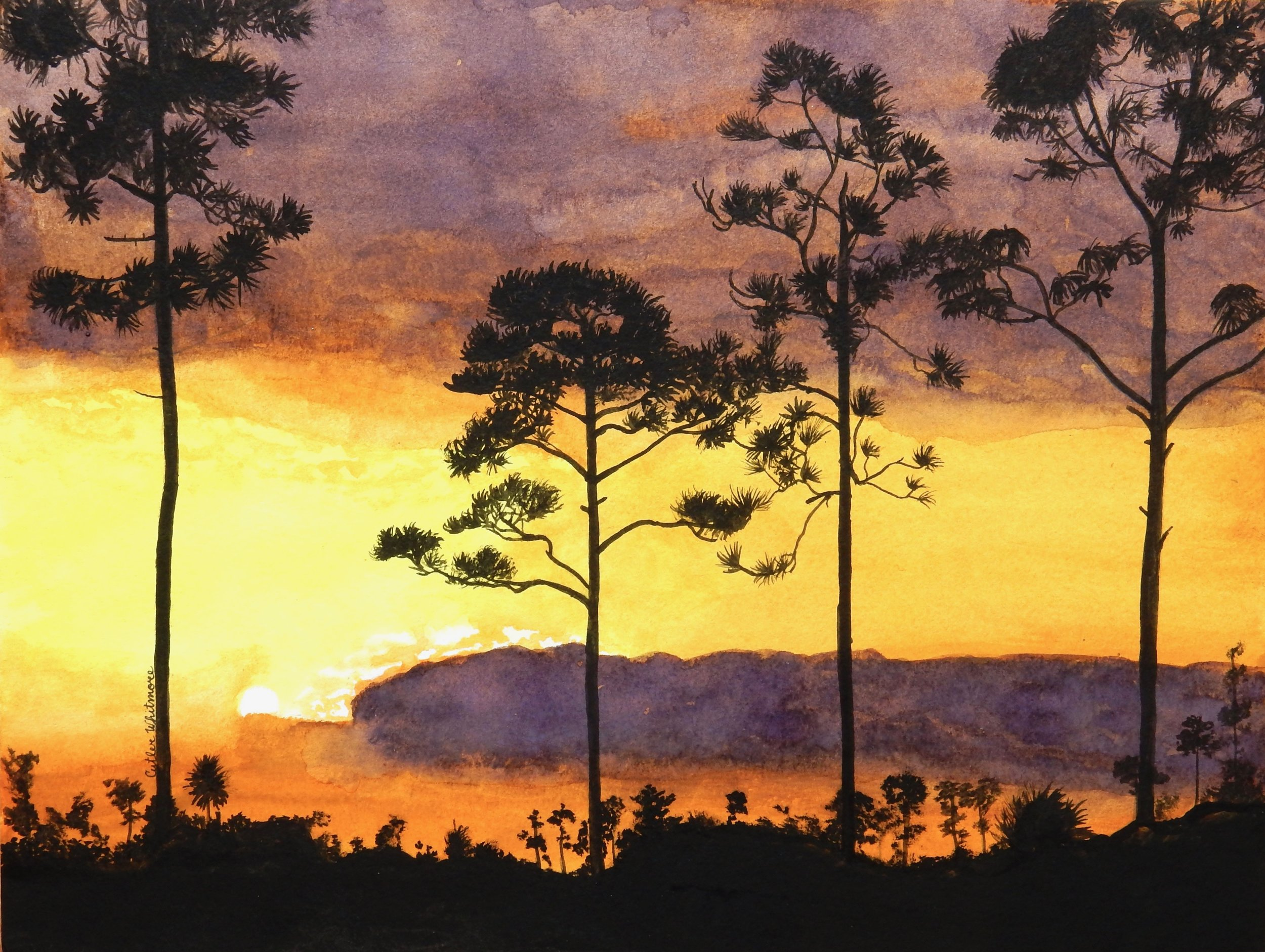 Cutler Whitmore.16yrs.watercolor sunset