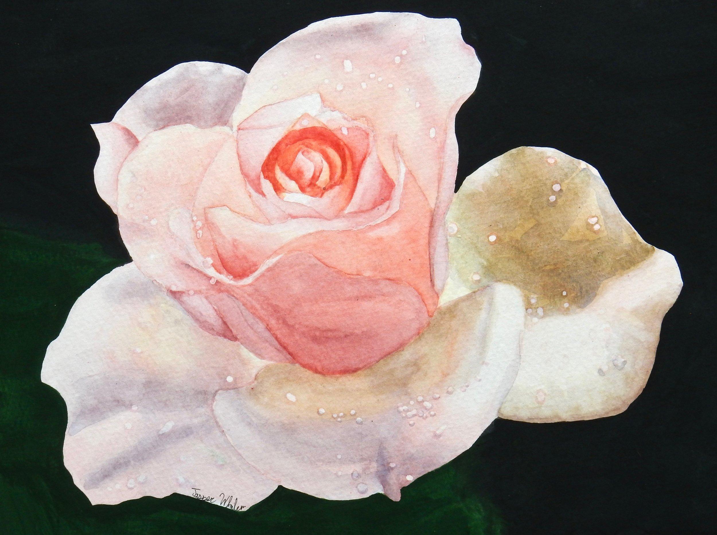 Emily Whalen.17 yrs.watercolor