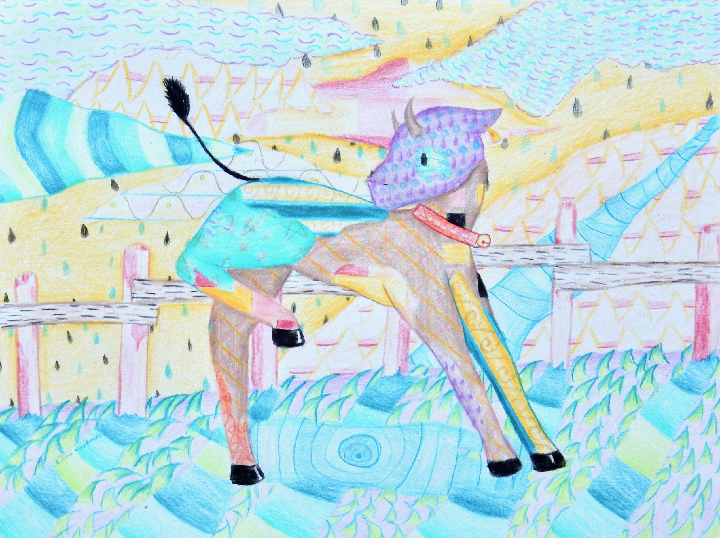 Emma Kaufmann.14yrs.colored pencil