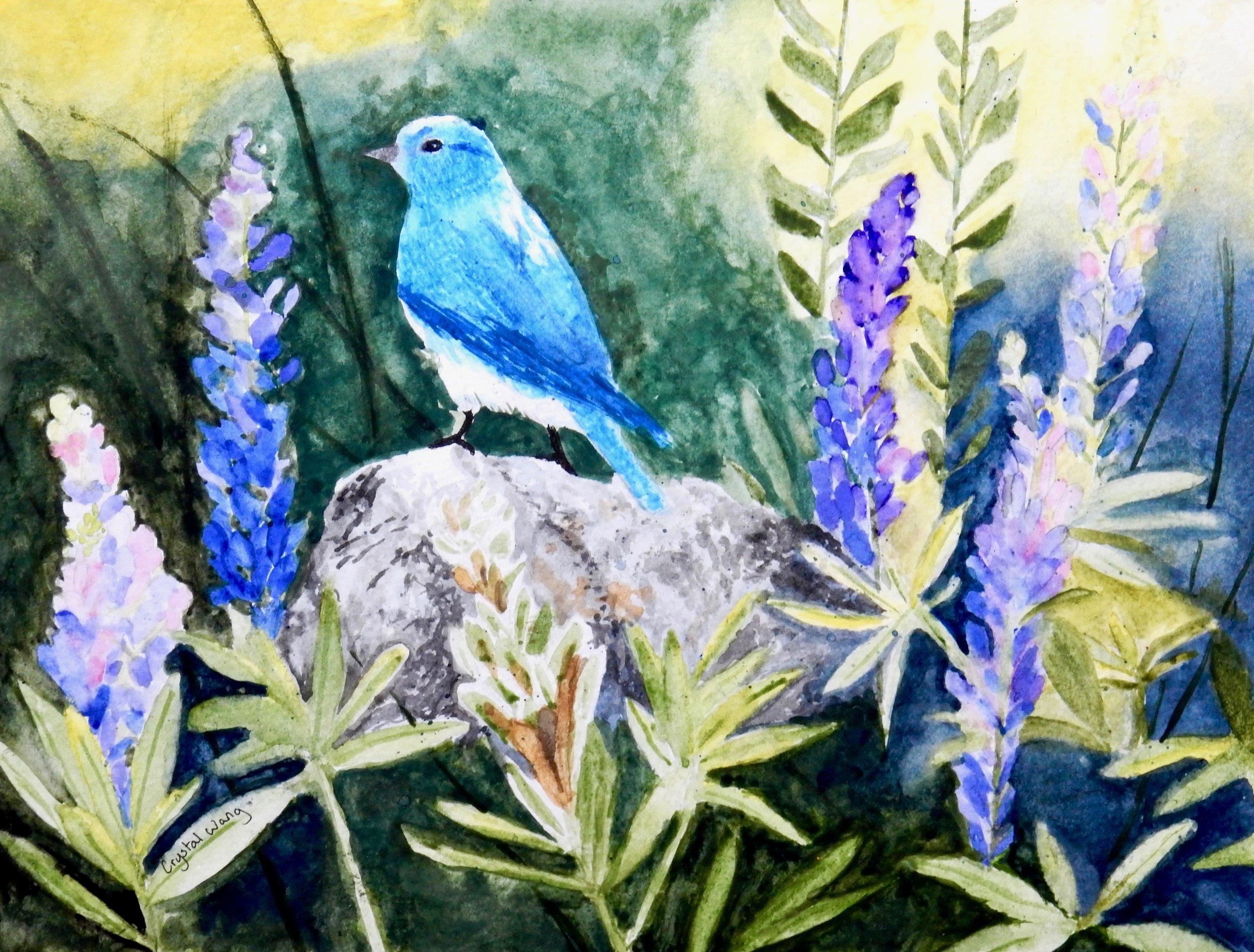 Crystal Wang.11 yrs,watercolor