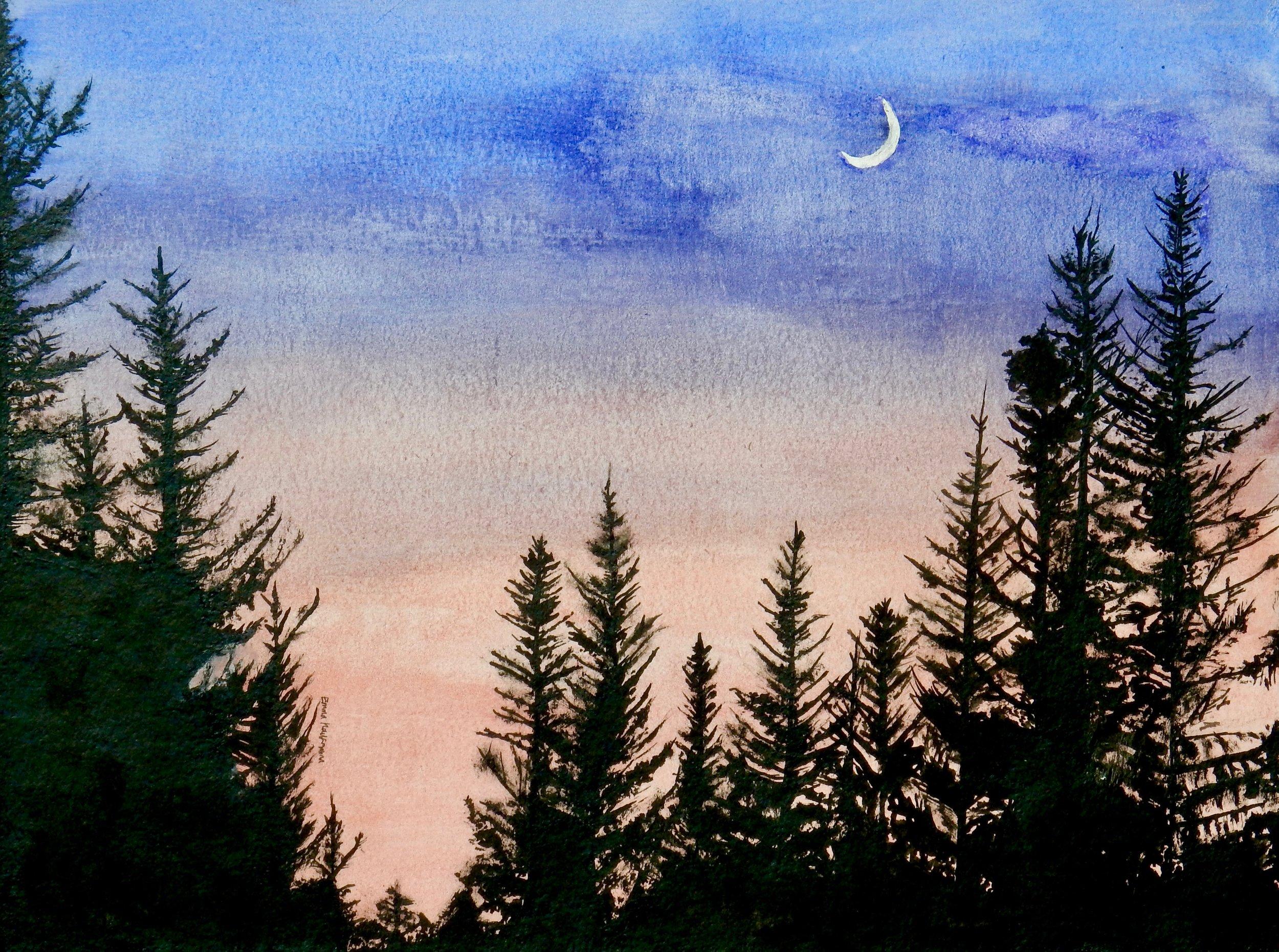 Emma Kaufmann.15 yrs.watercolors