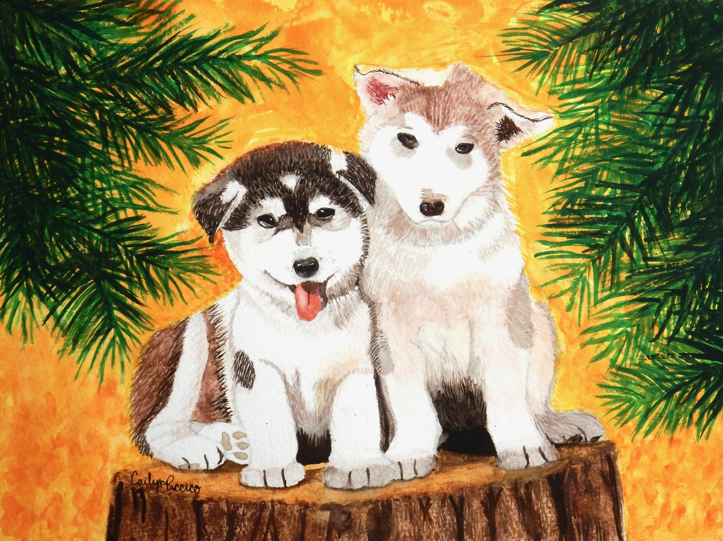 Cailyn Paccico. Two Huskies On A Stump. watercolor