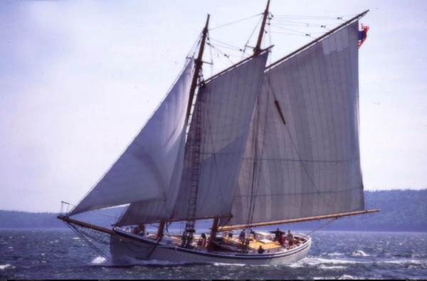 American Eagle under full sail in Penobscot Bay, Maine