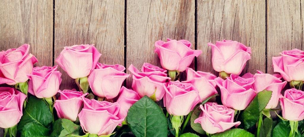 Pink-roses-wood-background_1024x768.jpg