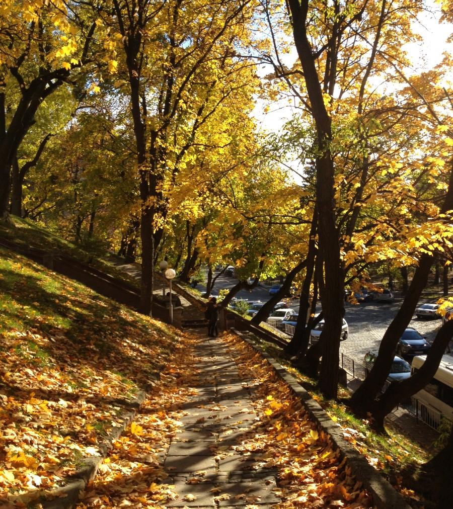Autumn Lvivs