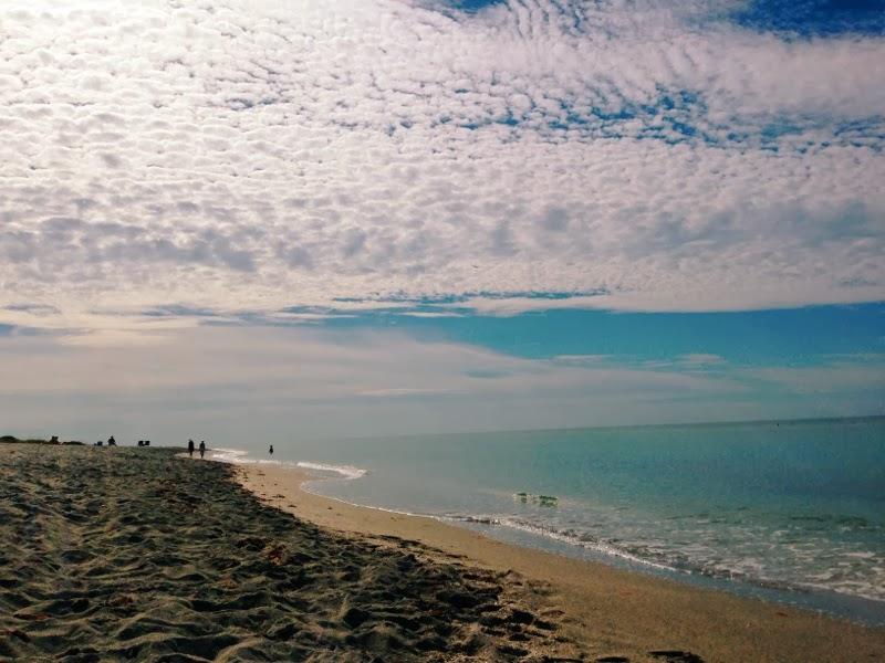 resize+beach.jpg