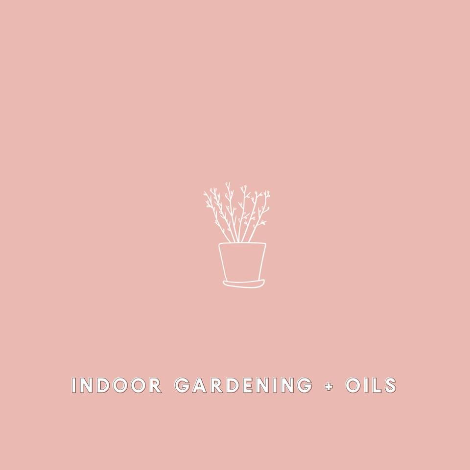 indoor gard oil.jpg