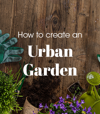 01 urban garden.png