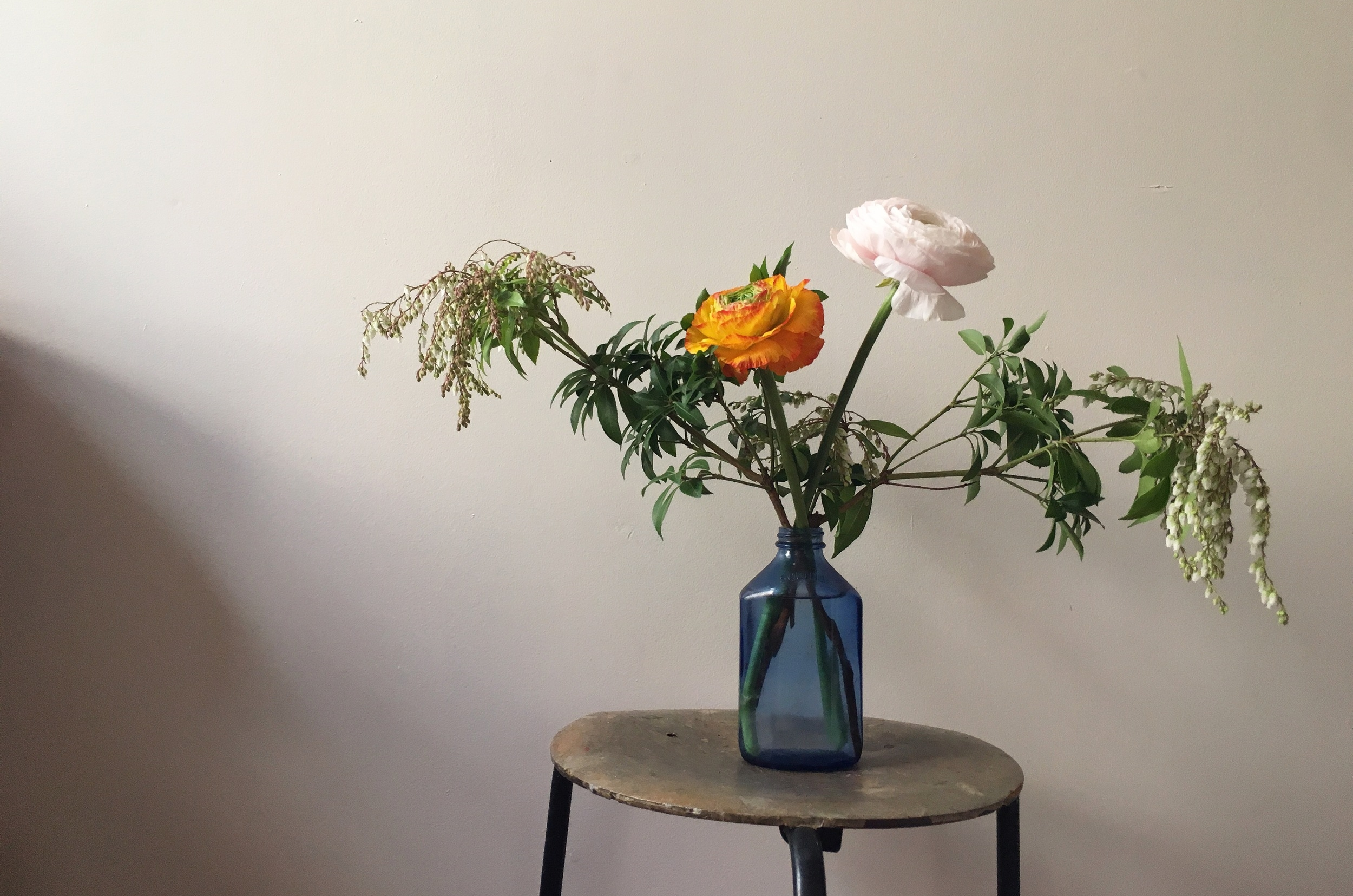 If only my world could be filled with Japanese ranunculus every day!