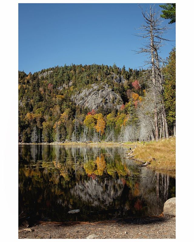 •Mont-Giant - Adirondacks - NY State - - - - - - - #autumn #color #newyorkstate #usa #fujifilm #outdoors #trekking #reflection #fall #automne #adirondacks #adirondack #pictureoftheday