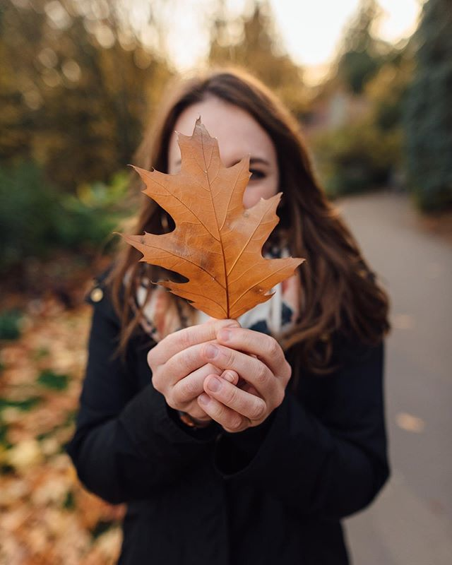 An important hobby of mine is staring intently at leaves, especially when they are the size of my face. 🍁 . . . . . . . . . . . . . . . #speechlessplaces #exploretocreate #passionpassport #mobilmag #ourplanetdaily #agameoftones #artofvisuals #lookslikefilm #moodygrams #beautifuldestinations #welivetoexplore #avontuurco #adventurethatislife #stayandwander #keepitwild #staywildmagazine #roamtheplanet #folkgood #exploreeverything #folktravel #folkvibe #folkcreative #moodcatchers #earthmood #beyondthelands_ #_earthwonders #auragramz #lightmob #takemoreadventures #lensbible