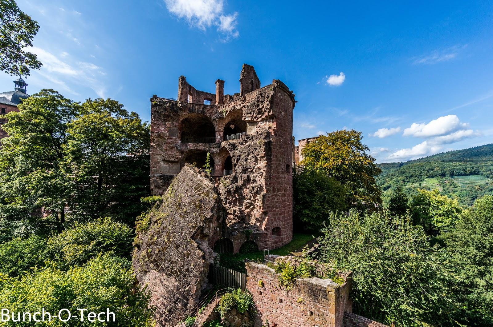 Heidelberg-65-August%2B30%2C%2B2014.jpg