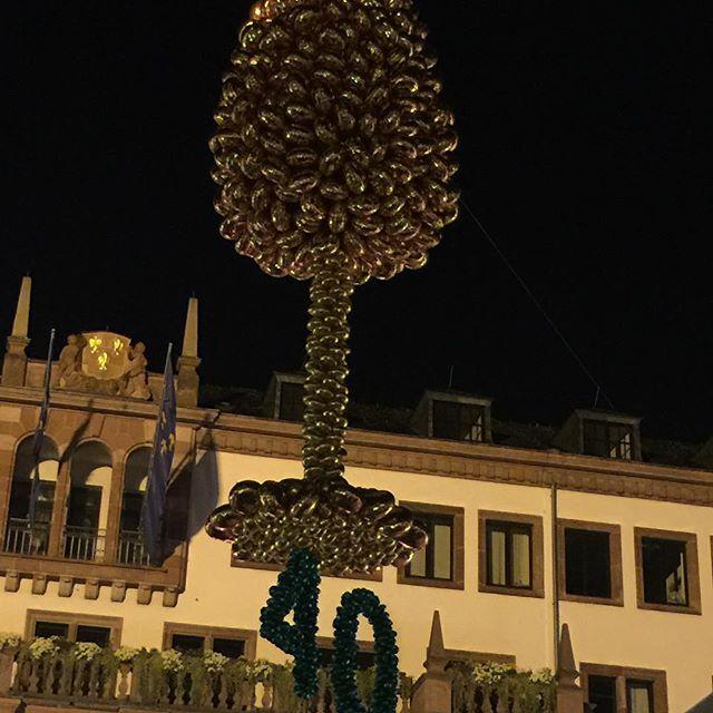 Rheingau Wine Fest