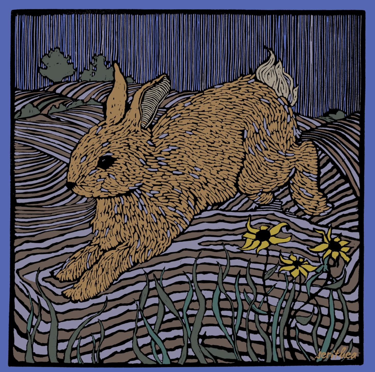 Night Rabbit