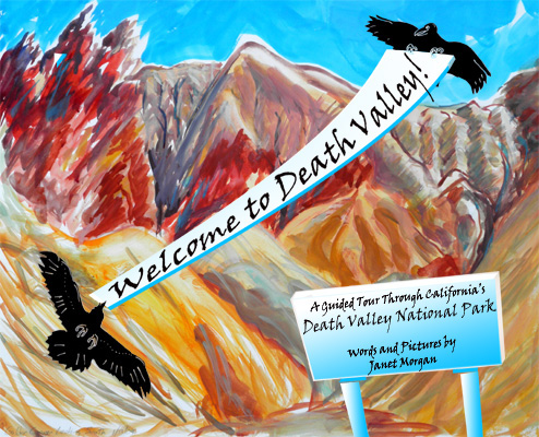 Welcome to Death Valley, Janet's children's book now available on Amazon.