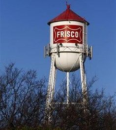 rodent removal frisco tower