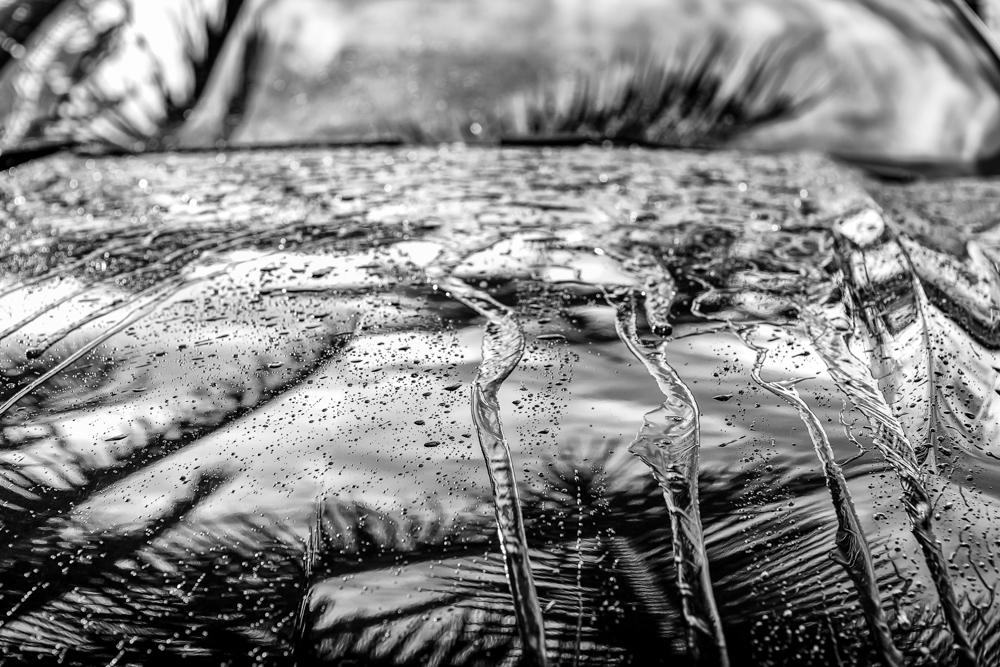 TW_REFLECTIONS_WATER_BEADING_005-Edit.jpg