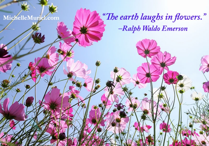 The earth laughs in flowers quote Ralph Waldo Emerson Read the latest blog post from bestselling author Michelle Muriel www.MichelleMuriel.com